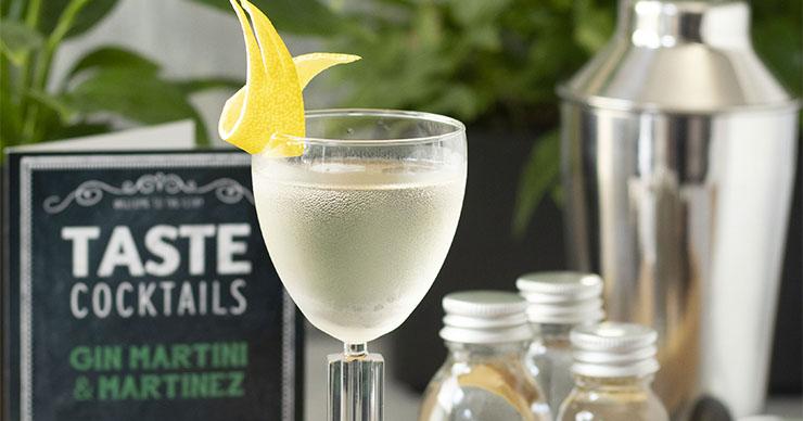 Gin Martini Cocktail Kit